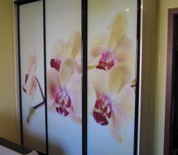 Шкаф-купе в детской «Орхидеи» от Green мебель